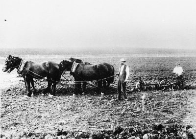 Ploughing the Ness farm