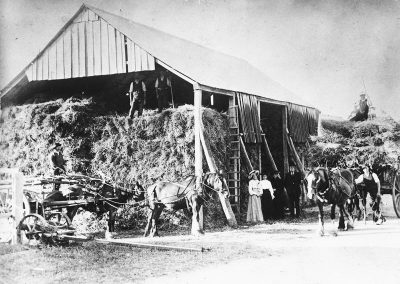 Pigeon Bank Barn, K.G. c. 1900s